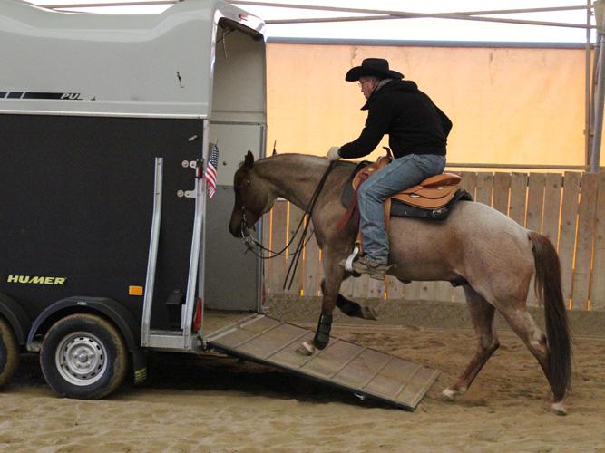 EXCA Extreme Cowboy Austria Race Horseman
