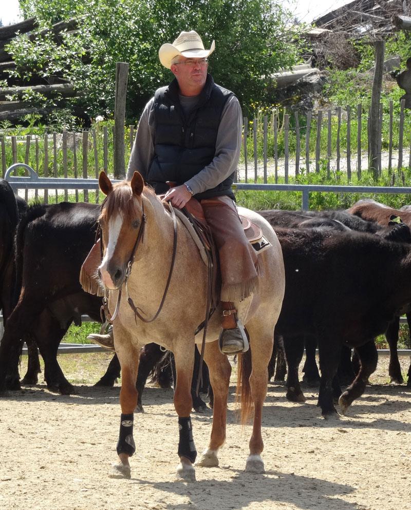 EXCA Extreme Cowboy Race Austria Joedy Cunningham