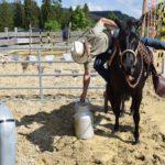 EXCA_Extreme_Cowboy_Race_Austria_WCR02