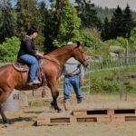 EXCA_Extreme_Cowboy_Race_Austria_WCR08