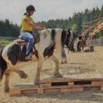 EXCA_Extreme_Cowboy_Race_Austria_WCR10